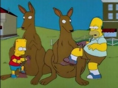 The Simpsons 06x16 : Bart vs. Australia- Seriesaddict