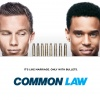 Common Law Poster Saison 1