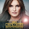Law-Order-Special-Victims-Unit/Posters-saison-21/Law And Order SVU - Poster Saison 21.jpg
