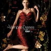 Poster TVD #1