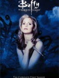 Buffy the Vampire Slayer- Seriesaddict