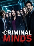 Esprits Criminels Saison 8 streaming vf