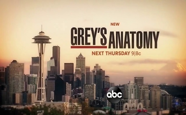 Grey's Anatomy - Promo 17x03