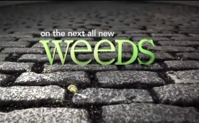 Weeds saison 1 en français