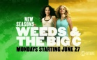Bring it On ! Promo Weeds et The Big C - 2